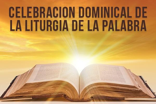 Celebracion Dominical De La Liturgia De La Palabra Diocese Of Camden
